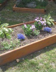 Zahrada / enviromentální
